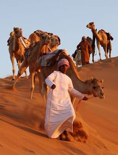 Camels descending a sand dune - Oman People Around The World, Around The Worlds, Jean Leon, Camelus, Sultanate Of Oman, Desert Life, Oman Travel, Arabian Nights, Orient