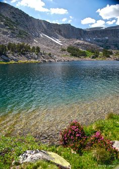 Granite Lake, cliffs and wildflowers - Eastern Sierras (S. Caputo)