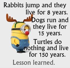Minions has been one of the extremely hilarious and funny animated movies for all of us which had surely made entire globe fan of it because of the hilarious. Here are 26 Minions Memes exercise Funny Cute, Haha Funny, Really Funny, Funny Texts, Funny Stuff, Epic Texts, Most Funny Jokes, Funny Insults, Funny School Jokes