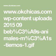 www.okchicas.com wp-content uploads 2015 09 beb%C3%A9s-animales-m%C3%A1s-tiernos-1.gif