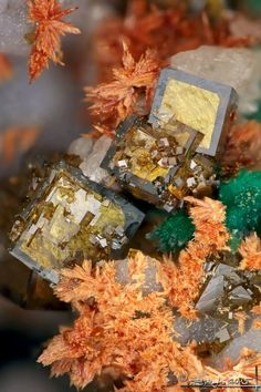 Mineral Images Only: Segnitite With Malachite & Carminite