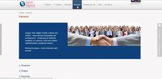 Inter Digital - бизнес сервис автоматизации заработка!