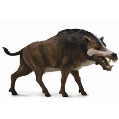 Daeodon is an extinct species that inhabited North America between 29 to 19 million years ago during the late Oligocene and early Miocene epochs. The name Daeodon comes from the Greek words daios, mea