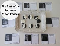 Teaching the phases of the moon, moon phases, free printables, hands on learning, Montessori, Science www.naturalbeachliving.com
