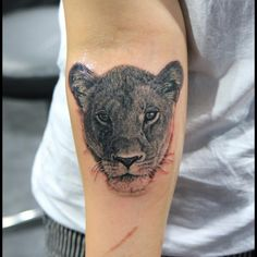 female lion pictures tattoo - Google Search
