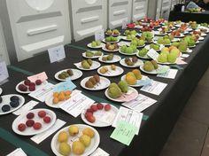 Fresh #fruit @HarrogateFlower