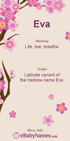 "Meaning of Eva: Eva is a form of the name Eve, which is derived from the Hebrew name Chawwah (sometimes written Chava), which is derived from the word ""chawah"" (breath)"