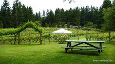 Whidbey Island Winery, Langley WA.