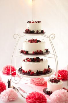 Weingarten Vineyard Wedding| Cake Decorated with fresh berries| Photo by:   feelsliketodayphotography.com