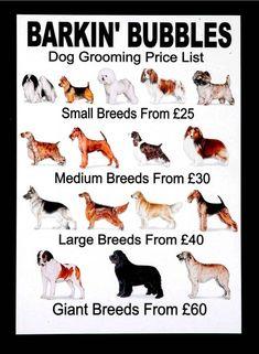 grooming price list | Price List — Groomergraphix