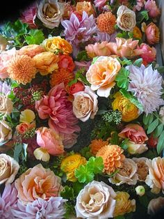 Flowers for all of us!