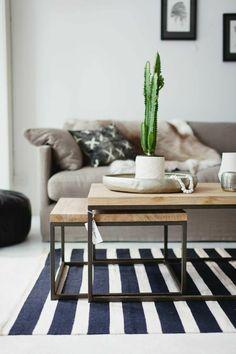 Kaktus auf dem Couchtisch - grüne Wohnzimmer-Deko
