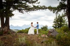 Wedding Tree Jackson Hole Wyoming