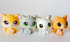 littlest pet shop kittens