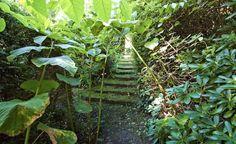 Små och stora trädgårdsrum, mellan träd, buskar, häckar och plank, sammanbundna med gångar och trappor, hos Per Fribergs i Bjärred. Spänning skapas genom att man inte vet vad som döljer sig runt hörnet. I den trånga passagen tillåts jätteslide, Fallopia sachalinensis. Genom avsmalningen skapas ett falskt perspektiv som ökar djupkänslan.