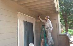 Denver, Paradise Painting, Painting Contractors, Commercial, House, Home Decor, Decoration Home, Home, Room Decor