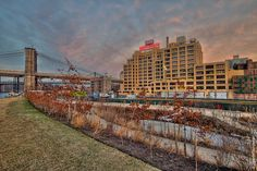 Watchtower and Brooklyn Bridge at Sunset by calvorn, via Flickr