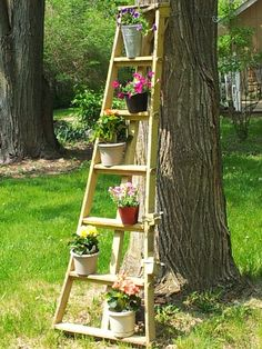 My old apple picking ladder has a new life!