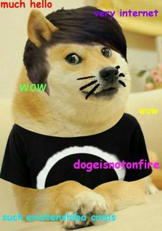 Sweet Dan's are made of memes, who am I to disagree? Traveled Tumblr and the YouTube communities, everybody's looking for Howell.