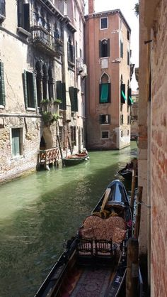 My fave pic I took in venice.