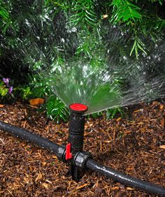 When Your Sprinkler System Springs A Leak You Need To Find And Repair It As Soon As Possible Finding Irrigation System Leaks Can Be Dif Sprinklers Sprin
