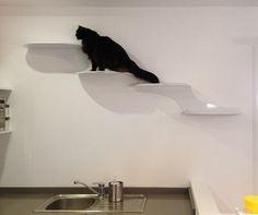 Modern Cat Climbing Shelves