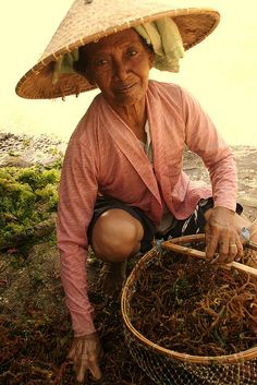 Seaweed farmer from bali