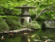 A very natural looking Koi pond in a  Japanese garden... love the lantern with over-sized flattened roof and the graceful high-arched base.