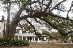 In his brain he buried the image of the unattainable house he looked at about 15 years ago. The A. Hays Town home breathed Louisiana style with its clean lines and sturdy symmetry, tucked back hundreds of yards behind a...