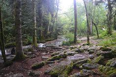 Cascades du Hérisson. Cascades, Medieval Town, Alps, Vines, Waterfall, Country Roads, Explore, Travel, Law School