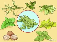 Immagine titolata Match Herbs and Spices to Vegetables Step 17