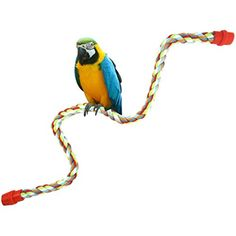 Fheaven Small or Medium or largeSized Parrot Toy Pure Natural Colorful Standing Perch Cage Parrot Chewing Toy L *** Click on the image for additional details.(This is an Amazon affiliate link and I receive a commission for the sales)