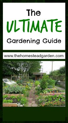 This is the Ultimate Gardening Guide, a list of everything you need to know to prepare your garden and have the best success. Garden success comes from great preparation, so get ready!