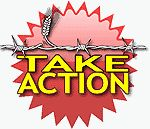 US Campaign to End the Israeli Occupation : Take Action