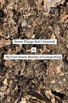 Seven Things I Learned in My First Seven Months of Composting