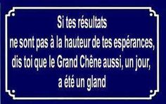 encourageant ! ....repinned by Maurie Daboux ღ ✺ღ❃ღ✿