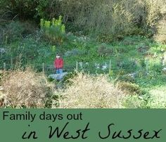 Our favourite family days out in West Sussex