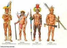 indios brasileiros zarabatana - Pesquisa Google