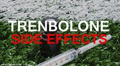 What are Trenbolone side effects? Read Full Information here: