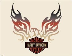 Outstanding Harley davidson motorcycles photos are available on our site. Check it out and you will not be sorry you did. Harley Davidson Logo, Harley Davidson Glasses, Harley Davidson Kunst, Harley Davidson Tattoos, Harley Davidson Pictures, Motor Harley Davidson Cycles, Harley Davidson Motorcycles, Davidson Bike, Image Moto