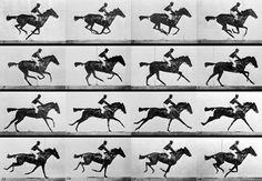 The first practical application of high-speed photography was Eadward Muybridge's 1878 investigation into whether horses' feet were actually all off the ground at once during a trot.
