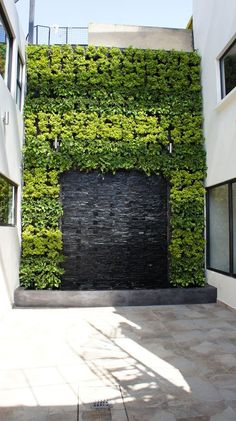A living wall, or vertical garden, is a collection of wall-mounted plants. Vertical wall gardens are the latest trend in home design. Jardin Vertical Diy, Jardin Vertical Artificial, Vertical Garden Design, Modern Garden Design, Landscape Design, Vertical Gardens, Green Facade, Water Walls, Green Architecture