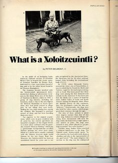 All sizes | 1972 Xolo Article page 1 | Flickr - Photo Sharing!