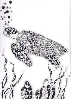 119 Best Zentangles Marine Life Images On Pinterest