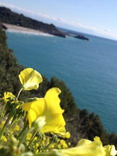 Spiaggia di Capo Grosso... Marina di Camerota