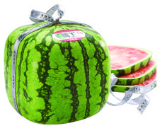 Cube Watermelon Seeds Price for Package of 5 seeds. Even if many people think that the watermelon gets itself a cube that is not the case. Watermelon Facts, Square Watermelon, Capsicum Annuum, Small Vegetable Gardens, Seeds For Sale, Fun Facts, Packaging, Fruit, Japan
