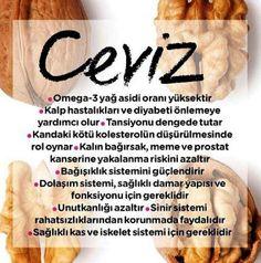 Ceviz sever misiniz? http://www.kizlarsoruyor.com/diger/q1100204-findik-mi-ceviz-mi-cekirdek-mi-fistik-mi #saglik