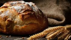 Have you ever wondered why Christians eat a small piece of bread and drink a sip of wine (or grape juice) in some church services?You'For thousands of years, the Church has continued a practice called communion, or dep. Daily Bread Prayer, My Daily Bread, Pan Amish, Superfood, Flour Bakery, Piece Of Bread, Grape Juice, Artisan Bread, Freshly Baked