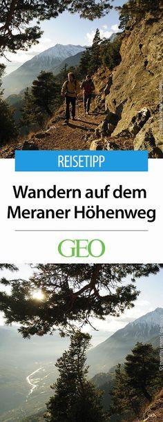In drei Tagen durch die italienischen Alpen. Wandertipp: Von Meran mit mediterranem Flair geht es hinauf ins Revier der Steinböcke und Gämsen: unterwegs auf dem Meraner Höhenweg.