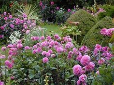 Chenies Manor Garden in September.